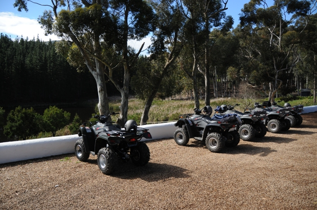 Quad Biking at wine tasting room