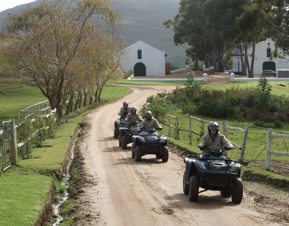 Cape Aventure Day Tours