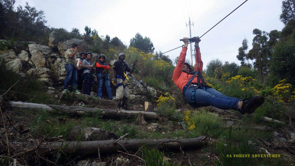 Tree Top Zipline Tour Hermanus a gliding adventure in the trees