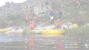 bg-SA_Forest_Adventures