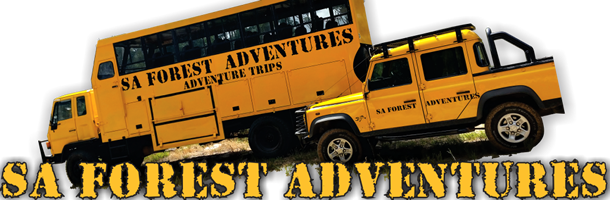 Cape Adventure Day Tours